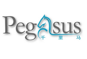 Shiji Technology acquires Pegasus PMS to boost Alibaba partnership