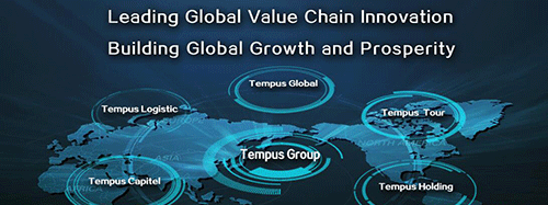 Tempus Global's net profit increased 22.52% in 2016