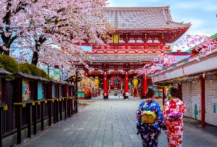 Chinese tourism to Japan rises 11.7% despite new tax as visa process goes digital