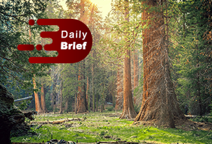 Accor steps up alliance with Alibaba; Sequoia China to invest in upscale hotel chain | Daily Brief